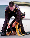 Manchester Police Officer Richard Boyle, puts on a bullet proof vest on his dog Marko, for the 1st time, after a presentation Friday at Manchester Police Headquarters. 2 K9 teams received the vests, Boyle and his dog and Officer Michael Ilewicz (ILEWICZ) and his dog Vegas,  by the Christina Poryanda, Executive Director of Connecticut Vest-A-Dog. A Jim Michaud pic 2/23/06