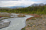 IMAGES OF THE YUKON,CANADA,Quill Creek,