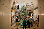 Washington, DC - November 30, 2009 -- A team of volunteers decorate the official White House Christmas Tree in the Blue Room of the White House, Monday, November 30, 2009..Mandatory Credit: Lawrence Jackson - White House via CNP