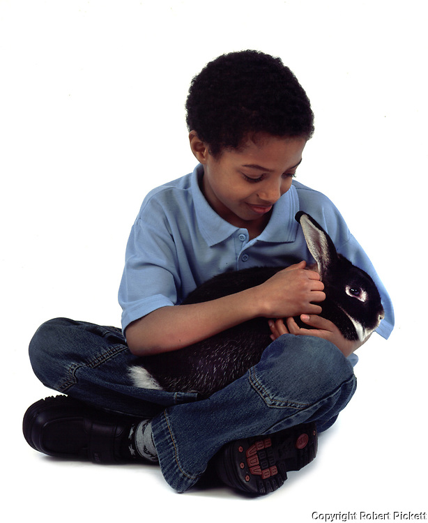 Young Boy holding and stroking Pet Rabbit, Tan & Black Colour, aged 10 years old, domestic, white background, cut out, studio,