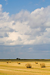 Wheat stubble rolls after harvest, clouds trailing passing storm in rural North Dakota