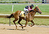 Baby French winning at Delaware Park on 6/13/12