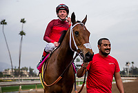 ARCADIA, CA - JANUARY 06: Itsinthepost #8 with Tyler Baze after winning the San Gabriel Stakes at Santa Anita Park on January 06, 2018 in Arcadia, California. (Photo by Alex Evers/Eclipse Sportswire/Getty Images)