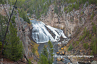 67545-09709 Gibbon Falls at Yellowstone National Park, WY