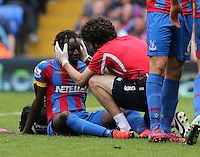 Pictured: Pape Souare of Crystal Palace injured on the ground<br />
