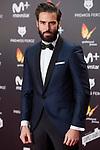Alex Barahona attends red carpet of Feroz Awards 2018 at Magarinos Complex in Madrid, Spain. January 22, 2018. (ALTERPHOTOS/Borja B.Hojas)