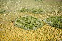 Aerial of Everglades National Park, Florida