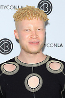 LOS ANGELES - AUG 12: Shaun Ross at the 5th Annual BeautyCon Festival Los Angeles at the Convention Center on August 12, 2017 in Los Angeles, California
