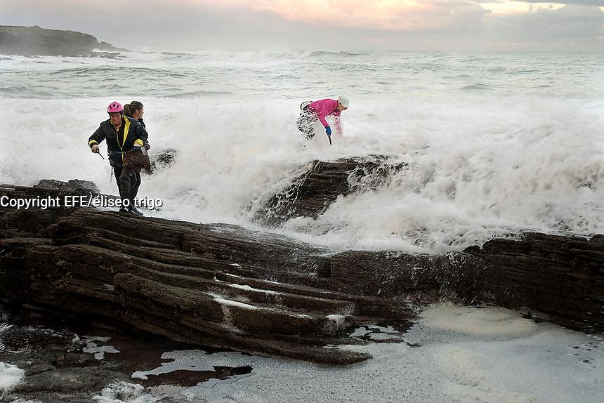 Fecha: 04-12-2014. LUGO, Rinlo.- Ribadeo.- Percebeiros en Rinlo. En la imagen un grupo de percebeiras se arriesgan en las rocas para recoger el preciado molusco, por la mañana temprano en la costa de Rinlo, aprovechando la marea baja. El dia 4 de Diciembre se abrió la veda, estos trabajadores del mar disponen de 60 días en todo el año para poder recoger un máximo de 5 kg de percebe diarios.