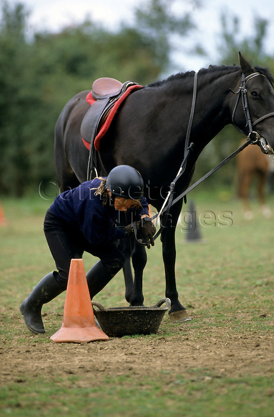 Horse rider feeding her horse