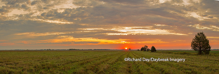 63893-02605 Sunrise at Prairie Ridge State Natural Area, Marion County, IL