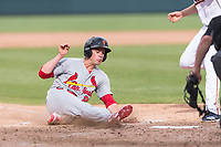 Surprise Saguaros designated hitter Lane Thomas (23), of the St. Louis Cardinals organization, slides into home plate during an Arizona Fall League game against the Salt River Rafters at Salt River Fields at Talking Stick on October 23, 2018 in Scottsdale, Arizona. Salt River defeated Surprise 7-5 . (Zachary Lucy/Four Seam Images)