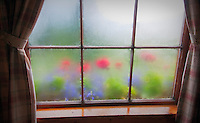 Steamy windows at Kulik Lodge, Katmai National Park, Alaska.