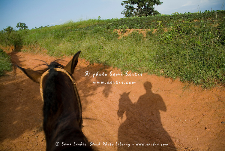 Shadow of a man horseback riding in the countryside, Vinales Valley, Cuba.