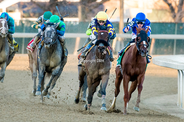 MARCH 07, 2020 : Water White, #6, with Jorge Vargas Jr. aboard, wins the Busher Stakes, at Aqueduct Racecourse in Ozone Park, NY. Dan Heary/Eclipse Sportswire/CSM