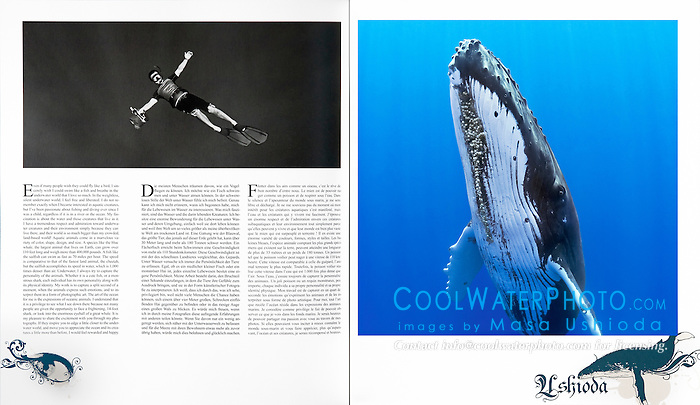 Blancpain Fifty Fathoms Watch 2009 Edition, advertising book, portfolio, editorial use, Germany, Image ID: Humpback-Whale-0025