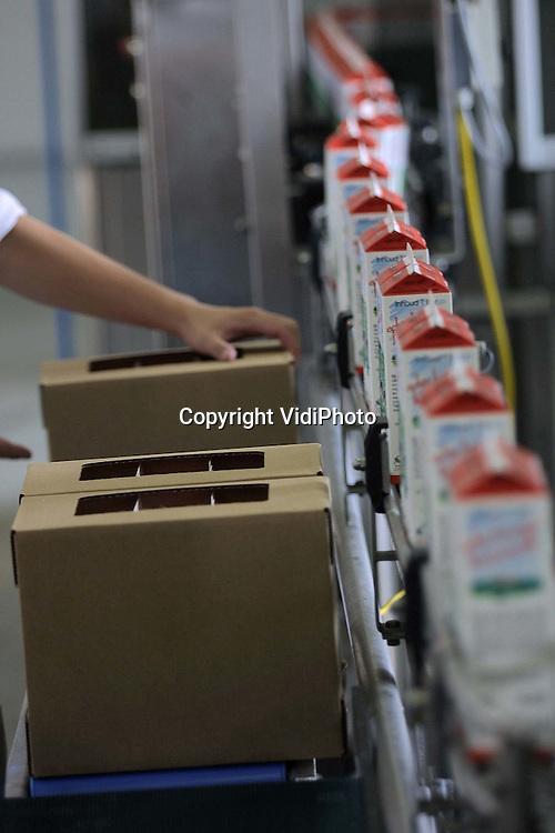 Foto: VidiPhoto..WELL - De vraag naar ambachtelijke zuivel, zonder allerlei smaakstoffen, zit flink in de lift. Dat merken ze ook bij Den Eelder in Well. Het kleine ambachtelijke fabriekje draait steeds meer omzet. De melk komt van de eigen 425 koeien.Van de ongeveer 4 miljoen liter melk per jaar wordt vla, yoghurt, melk en karnemelk gemaakt. Een gloednieuw produkt op de Nederlandse markt en door Den Eelder geintroduceerd  is de ambachtelijke geitenvla en geitenkarnemelk voor mensen met een koemelkallergie.
