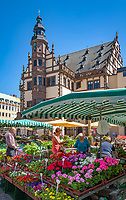 Germany, Bavaria, Lower Franconia, Schweinfurt: farmer's market and city hall on market square | Deutschland, Bayern, Unterfranken, Schweinfurt: Wochenmarkt auf dem Marktplatz mit Rathaus