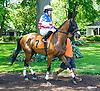 Wilburn's Princess before The International Ladies FEGENTRI  race at Delaware Park on 6/13/16