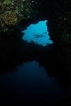 Angels Window & Diver, Lembeh Straits, Sulawesi Sea, Indonesia, Amazing Underwater Photography