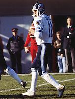 Tony Adams Toronto Argonauts quarterback. Copyright photograph Scott Grant