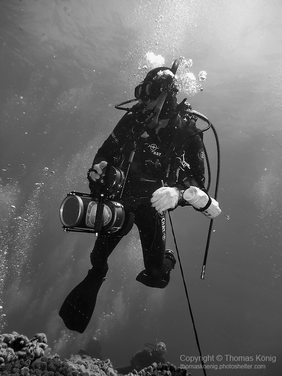 Qixingyan ('Seven Star Rock'), Taiwan -- Diver hooked to the reef with a reef hook.
