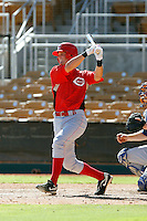 Alex Buchholz - Cincinnati Reds 2009 Instructional League. .Photo by:  Bill Mitchell/Four Seam Images..