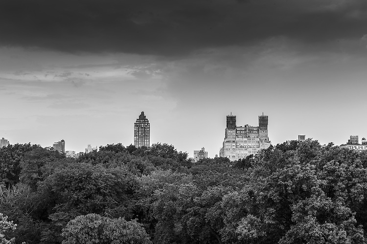 View of Central Park from the terrace of the MET - Metropolitan Museum.  Manhattan, New York, USA.