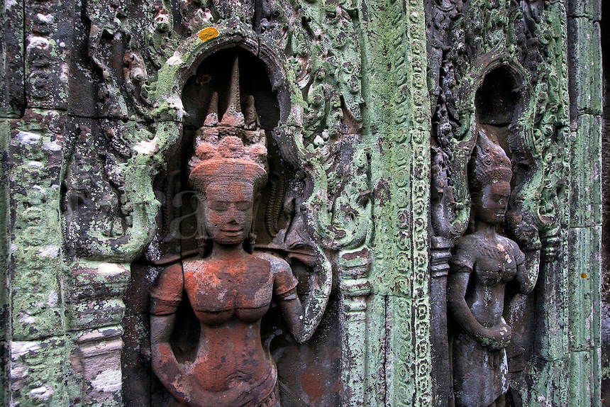 Lichen grows on stone carved bas relief  Apsaras (celestial maidens) at Ta Prohm, built by Jayavarman VII & part of the  Angkor Wat temple complex - Siem Reap, Cambodia...