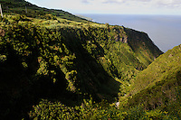 Blick vom Miradouro da Ribeira Funda auf der Insel Faial, Azoren, Portugal