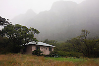 Backcountry Paliku cabin deep in the soul of HALEAKALA NATIONAL PARK on Maui in Hawaii on another cloud shrouded day