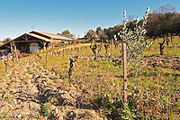 Domaine Fontedicto, Caux. Pezenas region. Languedoc. Terroir soil. The winery building. France. Europe. Vineyard.