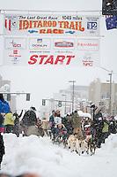 Jody Bailey leaves the 2011 Iditarod ceremonial start line in downtown Anchorage, during the 2012 Iditarod..Jim R. Kohl/Iditarodphotos.com