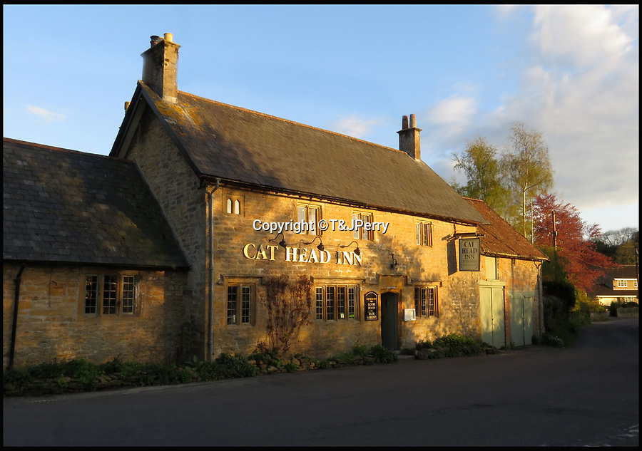 BNPS.co.uk (01202 558833)<br /> Pic: T&JPerry/BNPS<br /> <br /> The Cat Head Inn today<br /> <br /> The little changed Somerset village of Chiselborough whose residents have pieced together their history in photographs.<br /> <br /> A rural village's community has painstakingly put together its social history over the last 40 years, which is now going on display.<br /> <br /> Tony and June Perry first started collecting images of Chiselborough, in south Somerset, 40 years ago for the project which celebrates the village's people, traditions and buildings.<br /> <br /> Dozens of villagers have helped the couple compile 600 photos which are finally going to be shown in a new exhibition.<br /> <br /> The images, which date back to the 1860s, highlight many notable events in Chiselborough's history including the fire of 1890 which saw the pub burn down.<br /> <br /> Other photos show the silver jubilee party of 1935, a school fancy dress day in 1954 and the renovation of the village's 12th century church in 1971.<br /> <br /> Situated on the River Parrett, Chiselborough is five miles west of Yeovil and has a population of just 275 people.