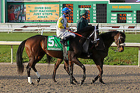 January 17, 2015: Forever Unbridled (KY) with Brian J Hernandez Jr. in the Silverbulletday Stakes at the New Orleans Fairgrounds course. Steve Dalmado/ESW/CSM