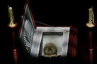 Former dictator military Gen. Augusto Pinochet is seen in his coffin at the Military School in Santiago, Chile on 11 December 2006..Chile's former dictator Augusto Pinochet has died at the age of 91. Pinochet came to power after a 1973 coup and became one of South America's most famous rulers..Photo: Marcelo Hernandez