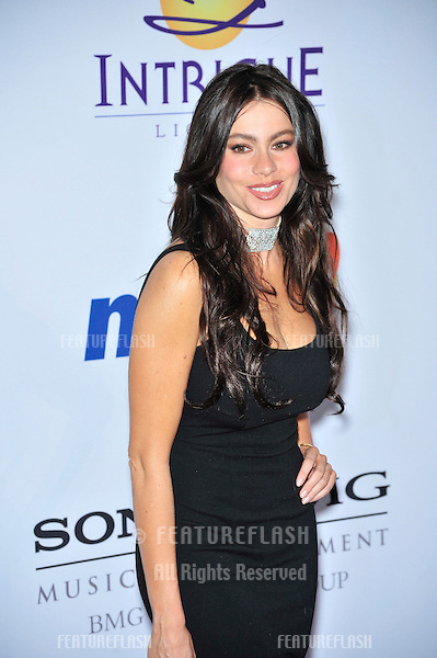 Sofia Vergara at music mogul Clive Davis' annual pre-Grammy party at the Beverly Hilton Hotel..February 9, 2008  Los Angeles, CA.Picture: Paul Smith / Featureflash