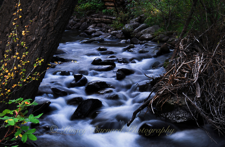"""EAGLE CREEK""<br />