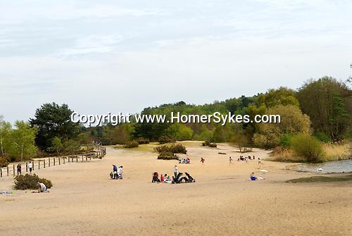 Frensham Beach. Surrey. UK.