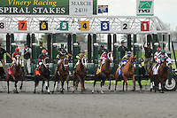 The start of the Grade 3 Bourbonette Oaks at Turfway Park in Florence, Kentucky on Saturday March 24, 2012.