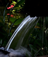 CALI - COLOMBIA - 20 - 06 - 2017: Cascada artificial en el Parque de las Garzas en la ciudad de Cali (Pance), Valle del Cauca, Colombia. / Artificial waterfall in the Park of the Herons in the city of Cali (Pance) in the Valle del Cauca, Colombia. / Photo: VizzorImage / Luis Ramirez / Staff. / Photo: VizzorImage / Luis Ramirez / Staff.