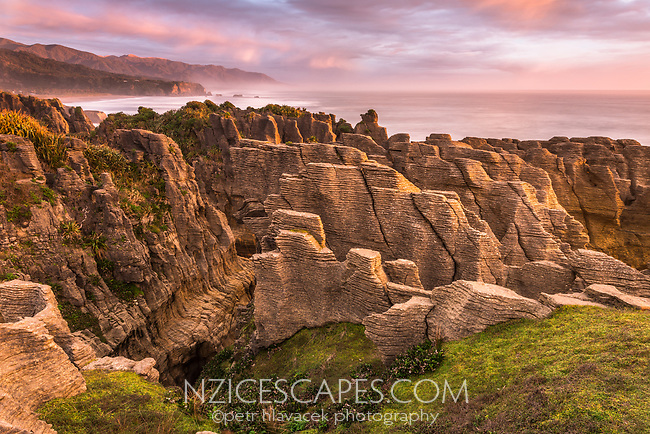 Pancake Rocks, limestone formations in Punakaiki at pastel sunset, Paparoa National Park, Buller Region, West Coast, New Zealand, NZ