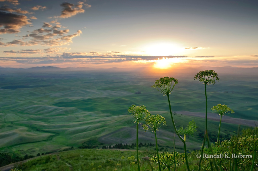 The sun rises over the rolling hills of the Palouse region of Eastern Washington, as viewed from Steptoe Butte.