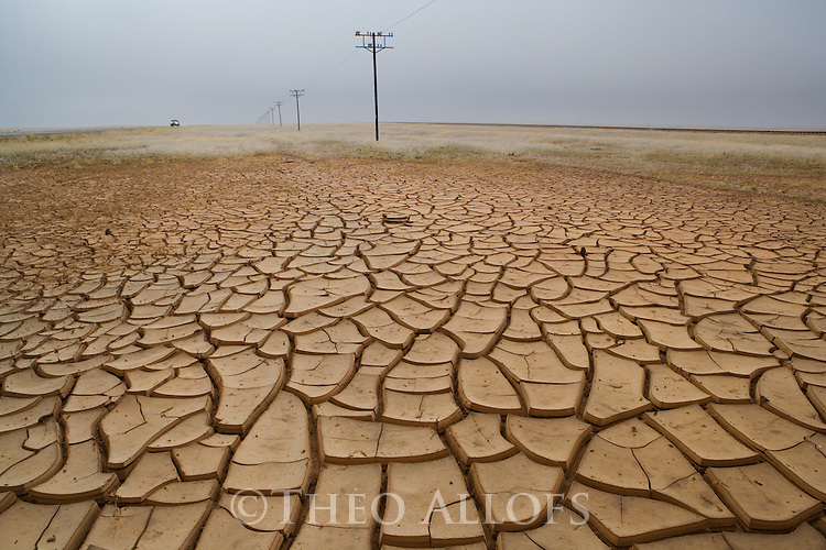 The effect of global warming on the Namib Desert. Unusual rain during the dry winter months. The drought patterns are the result of earlier rains and subsequent drought