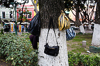 Puebla, Mex - Dec 9: Unidentified bags hanging on a tree in the zocalo onTuesday, December 9, 2008, in Puebla, Mexico. (Photo by Landon Nordeman)