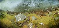 Approaching Wistman's Wood, Dartmoor