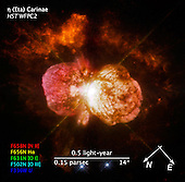"Washington, DC - September 9, 2009 -- The signature balloon-shaped clouds of gas blown from a pair of massive stars called Eta Carinae have tantalized astronomers for decades. Eta Carinae has a volatile temperament, prone to violent outbursts over the past 200 years. Observations by the newly repaired Space Telescope Imaging Spectrograph (STIS) aboard the National Aeronautics and Space Administration's (NASA) Hubble Space Telescope reveal some of the chemical elements that were ejected in the eruption seen in the middle of the 19th century.  STIS analyzed the chemical information along a narrow section of one of the giant lobes of gas. In the resulting spectrum, iron and nitrogen define the outer boundary of the massive wind, a stream of charged particles, from Eta Car A, the primary star. The amount of mass being carried away by the wind is the equivalent one sun every thousand years. While this ""mass loss"" may not sound very large, in fact it is an enormous rate among stars of all types. A very faint structure, seen in argon, is evidence of an interaction between winds from Eta Car A and those of Eta Car B, the hotter, less massive, secondary star.  Eta Car A is one of the most massive and most visible stars in the sky. Because of the star's extremely high mass, it is unstable and uses its fuel very quickly, compared to other stars. Such massive stars also have a short lifetime, and we expect that Eta Carinae will explode within a million years.  Eta Carinae was first catalogued by Edmund Halley in 1677. In 1843 Eta Carinae was one of the brightest stars in the sky. It then slowly faded until, in 1868, it became invisible in the sky. Eta Carinae started to brighten again in the 1990s and was again visible to the naked eye. Around 1998 and 1999 its brightness suddenly and unexpectedly doubled.  Eta Carinae is 7,500 light-years away in the constellation Carina. The Hubble observations are part of the Hubble Servicing Mission 4 Early Release Observations. NASA astron"