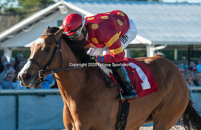 February 8, 2020: Lucrezia, ridden by Daniel Centeno, wins the 2020 running of the Suncoast Stakes at Tampa Bay Downs in Oldsmar, FL. Sophie Shore/ESW/CSM