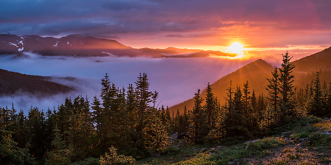 summer morning on Trail Ridge, sunrise in Rocky Mountain National Park, Colorado, USA