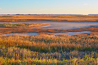 Scenic marsh in Glynn County, Georgia near the town of Brunswick